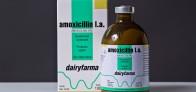 Amoxicillin l.a.